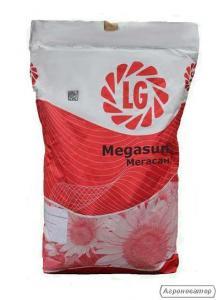Семена подсолнечника Мегасан, от компании Лимагрейн