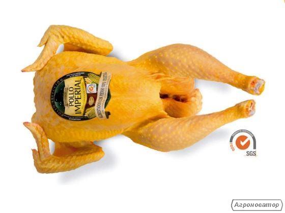Продаем куриное мясо, тушки кур, разделка- Испания 100% Сертификаты