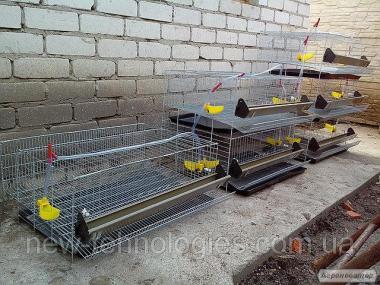 Клітки для перепелів 1,2,3 та 5 поверхів. клітки для утримання перепелів