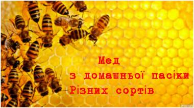 Продам мед с собственной пасеки