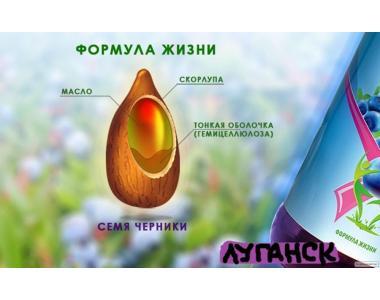 Чорнична паста «Рідкі фрукти», 1л
