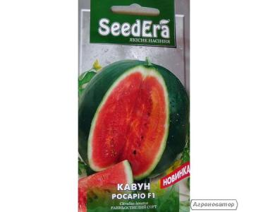 Семена SeeDera