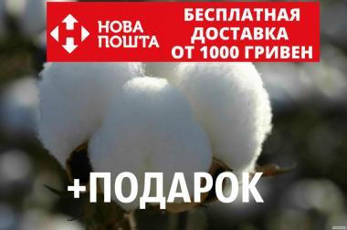 Бавовна насіння (10 штук) бавовник звичайний (Gossypium hirsutum)