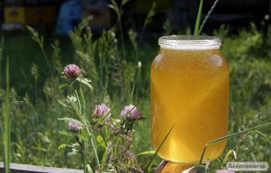 Продам натуральной мед майськой
