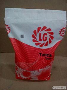 Насіння соняшнику Limagrain Tunka - Оригінал