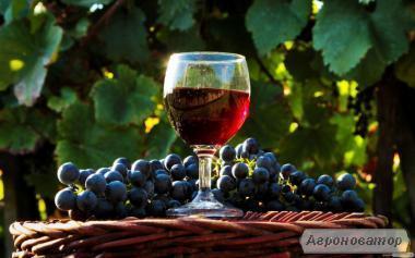 Домашнє червоне вино