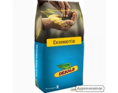 Семена рапса озимого Монсанто гибрид Экзекютив, г. Киев