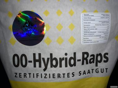 Рапс озимый ШЕРПА, NPZ-Lembke, Германия. Среднеранний гибрид ШЕРПА