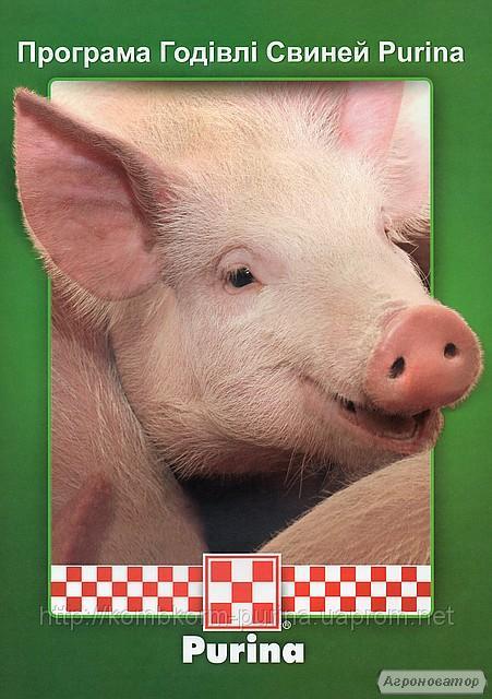 Комбикорм для свиней (престартер, старт, гроуер, финишер) ТМ Purina