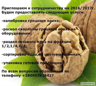 Надаємо послуги по переробці волоського горіха