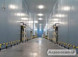 Строительство холодильные склады,  ангары, элеваторы, свинарники, коро