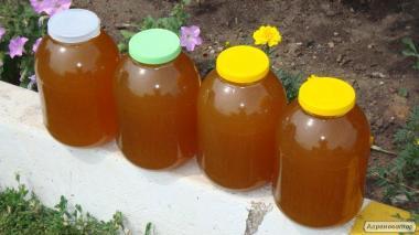 Мед різнотрав'я 1,5 т, 40грн./кг