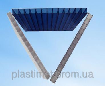 Стільниковий полікарбонат POLICAM прозорий 10мм
