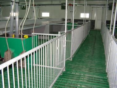 Будівлі тваринницьких ферм (свинарники)