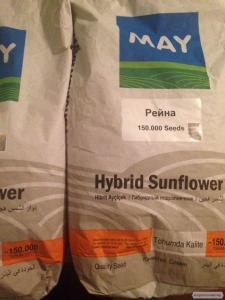 Семена подсолнечника Рейна (May Agro Seed)