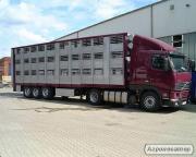 Пропоную послуги скотовозов 8 і 12 тонн