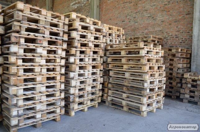 Купуємо піддони в Чернігові розміром 1200/800 і 1200/1000