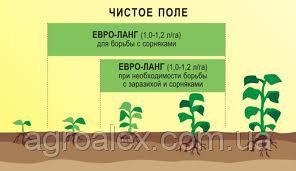 Євро-Ланг для соняшнику НЕРТУС