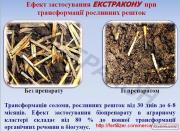 Трансформатор-деструктор Екстракон, працюємо по всій Україні