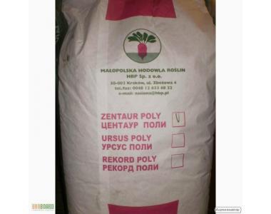 Продам насіння кормових культур