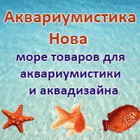 Акваріумістика Нова - магазин акваріумістики