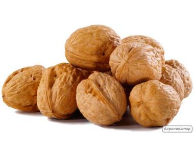 Куплю орех грецкий в скорлупе