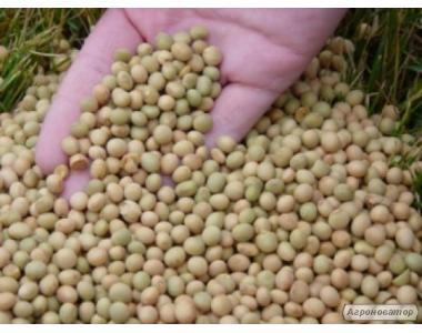 Продажа посевного материала Сои и зерновых