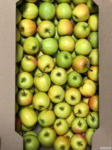 Продам яблоки сорта Голден Делишес, калибр 6, цена 11 грн за килограмм