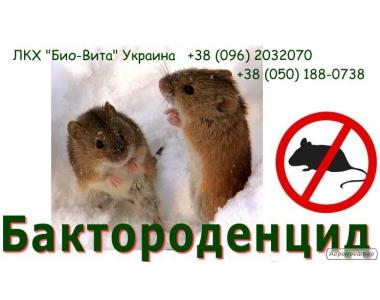 Бактороденцид - эффективное средство борьбы с мышами