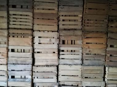 продам деревянные ящики