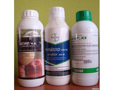 инсектициды скор, энвидор, калипсо, цезарь