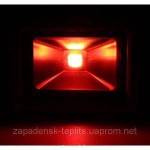 Світлодіодний прожектор LED 50Вт 620-630nm (червоний), IP66