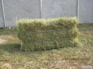 Продам сено луговое 2017 г