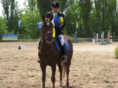 Терміновий продаж коня виїздка/конкур