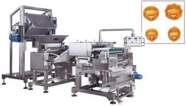Пельменні апарати. Будова лінії виробництва виробів з начинкою
