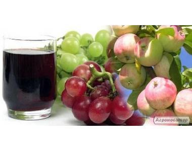 Прес гідравлічний для виробництва соку
