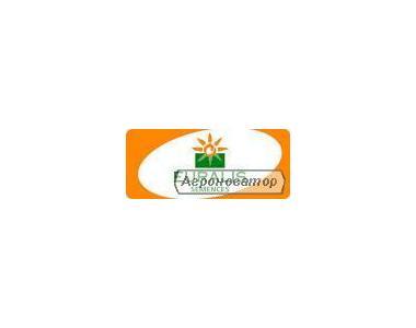 Кукуруза посевная Биг Стар (Евралис Семенс)