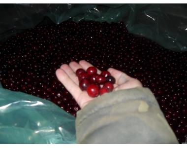 Замороженные ягоды