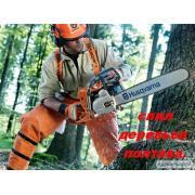 Спил обрезка деревьев.услуги бензопилой.Обрезка сада Полтава.