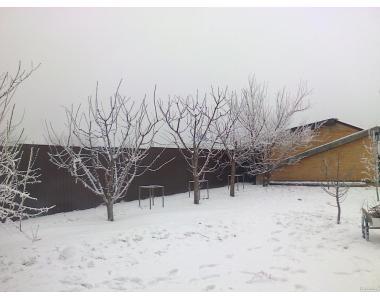 Спіл обрізка дерев.послуги бензопилою.Обрізка саду Полтава.