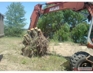 Аварійний спил дерев, видалення ав