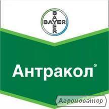 Фунгіцид Антракол (Bayer) - 10 кг