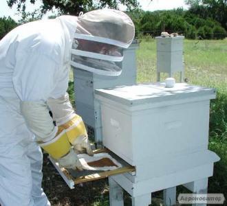 Инвентарь, оборудование, одежда, лекарства для пчеловодства.