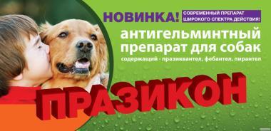 Празикон -ангельминтик для собак Индия