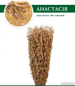 """Сорт сої """"Анастасія"""", 2 репродукція, урожай 2016 року"""