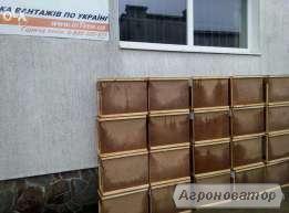продам пчелопакеты карпатки
