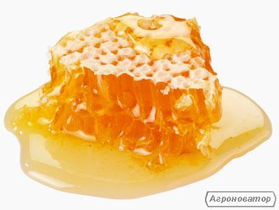 Продам мед гречка+росторопша