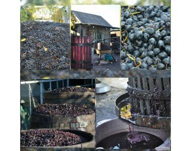 бессарабское домашнее вино