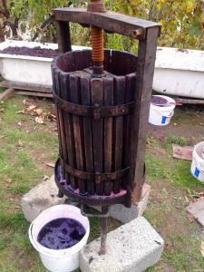 Домашнє напівсолодке вино. 100% натуральне без добавок!!!