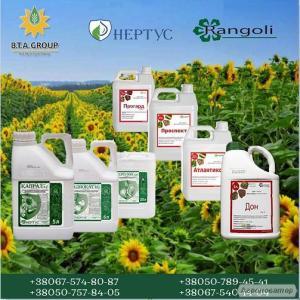 Средства защиты растений Нертус, Ранголи